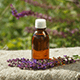 7 Ways To Use Clary Sage Essential Oil